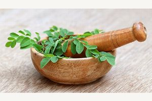 Moringa - das neue Superfood: Interview mit Frau Dr. Cornelia Wallner-Frisee